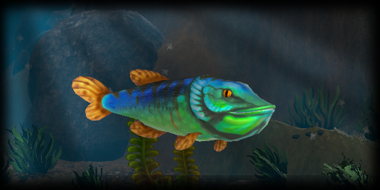 Feed and grow fish en steam for Fed and grow fish